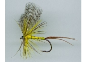 Yellow May Variant Fly