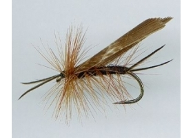 Giant Stone Dry Fly